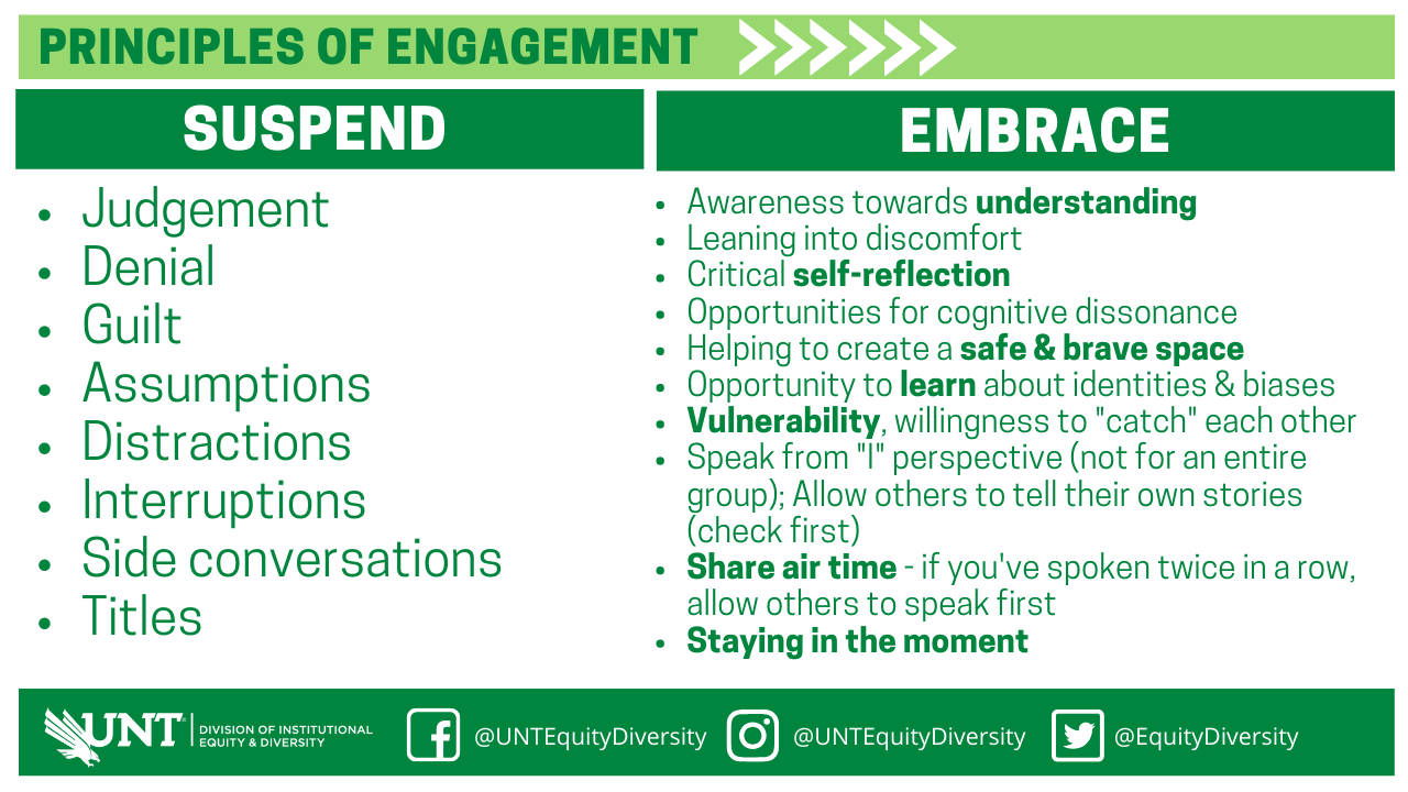 Principles of Engagement list in graphic form